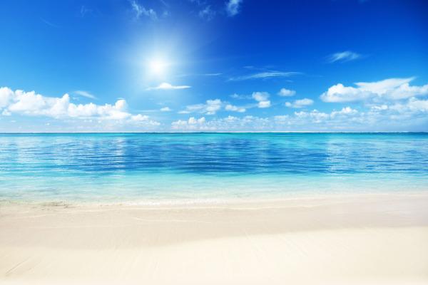 fort lauderdale beach art