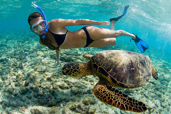 Hollywood Beach Snorkeling Travel Guide